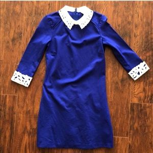 Ted Baker royal blue with lace collar dress size 1